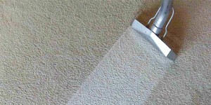 carpet cleaning camden